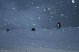aktuelles_winter