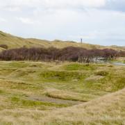 Dünen und Leuchtturm auf Norderney