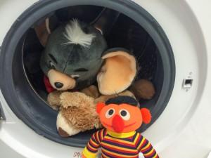 Plpschtiere in der Waschmaschine