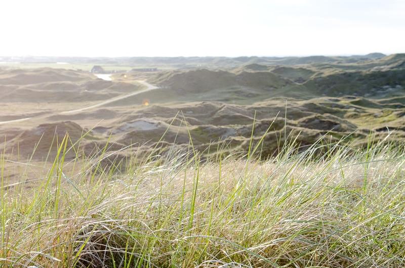 Was tun die Inseln für den Umweltschutz?